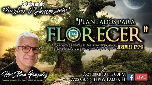 Aniversario #8: Plantados Para Florecer \/  Anniversary #8: Planted to Bloom