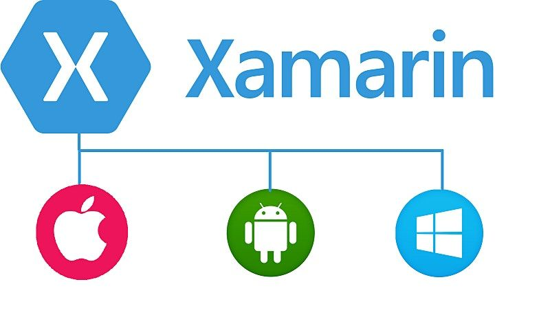 4 Weekends Beginners Xamarin Mobile apps Training Course Tampa
