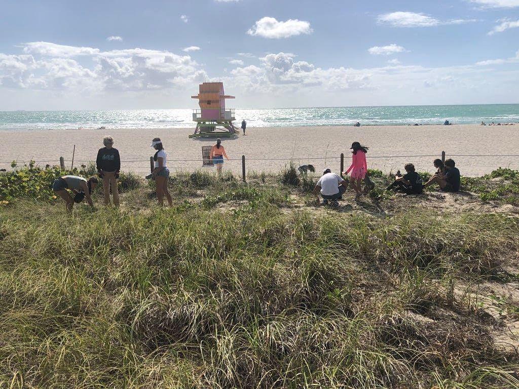 Dune Restoration as part of Blue Scholars' WORLD OCEAN CELEBRATION