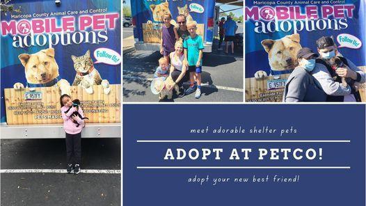 Petco Adoption Event in Phoenix