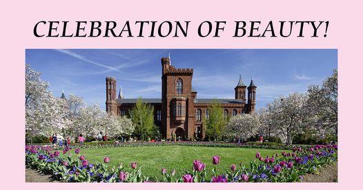 Celebration of Beauty