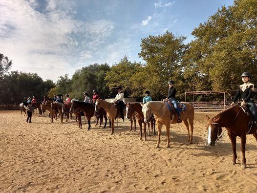 English Horse Show