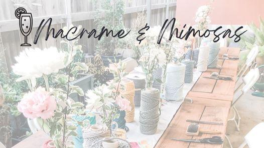 Macrame & Mimosas
