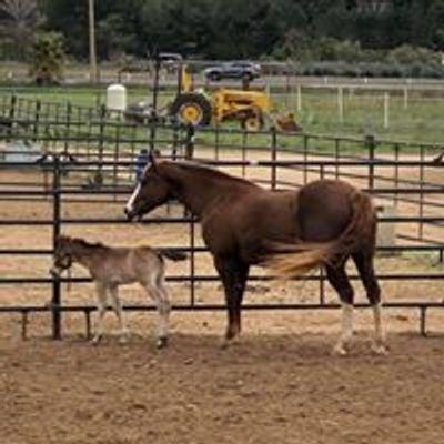 Rancho Descanso - Valley Center