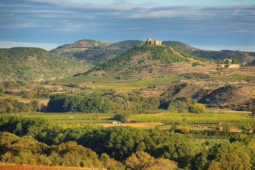Spanish Wine Academy Featuring Alana Zerbe