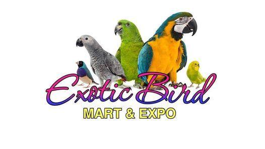 Pleasanton Exotic Bird Mart