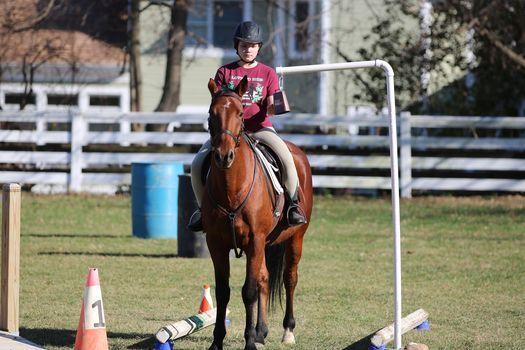 Working Equitation Schooling Show