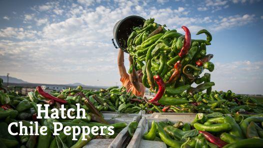 Hatch Chile Roasting - Holland