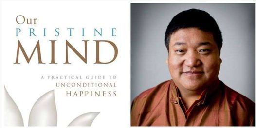 DBT Book Study - Our Pristine Mind: A Practical Guide to Unconditional Happiness