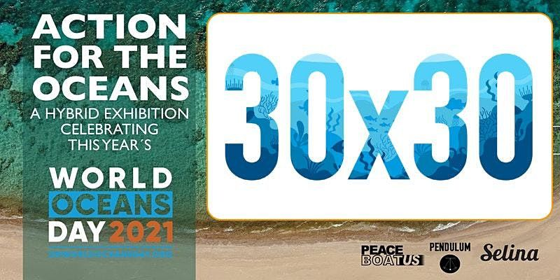 30 x 30 Youth Leaders  - Action for the Oceans