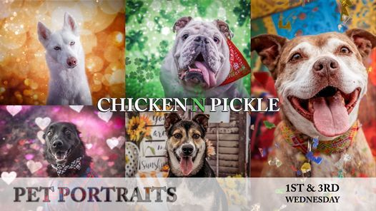 Chicken N Pickle Pet Portraits