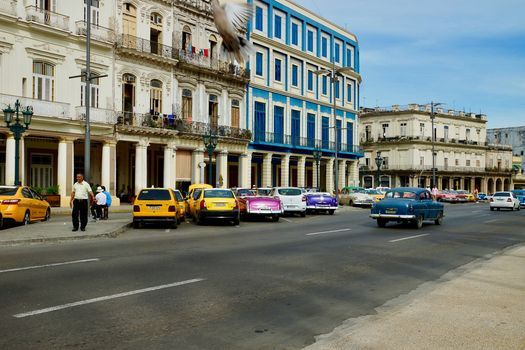 Cuba in Ybor
