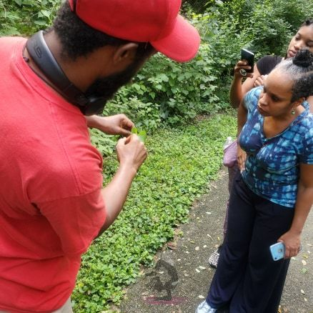 Community Empowerment Herb Walk DC hosted by AWHA