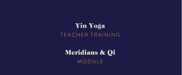 Teacher Training: Meridians and Qi