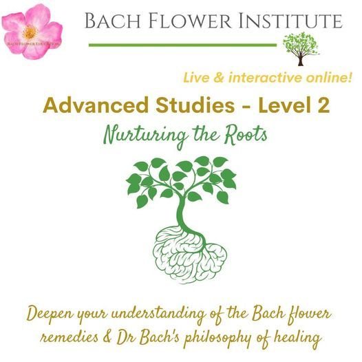 Advanced Studies - Level 2 PACIFIC - LIVE ONLINE