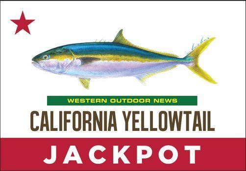 2021 WON CA Yellowtail Jackpot