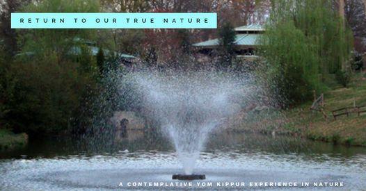 Return to Our True Nature *Yom Kippur Outdoors *