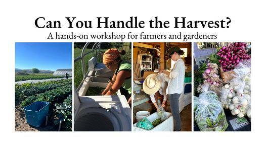 Can You Handle the Harvest?