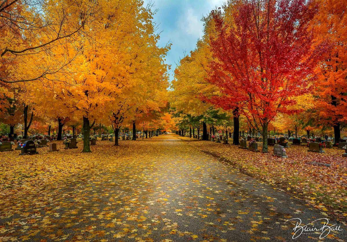 Arkansas Fall Colors Photo Workshop
