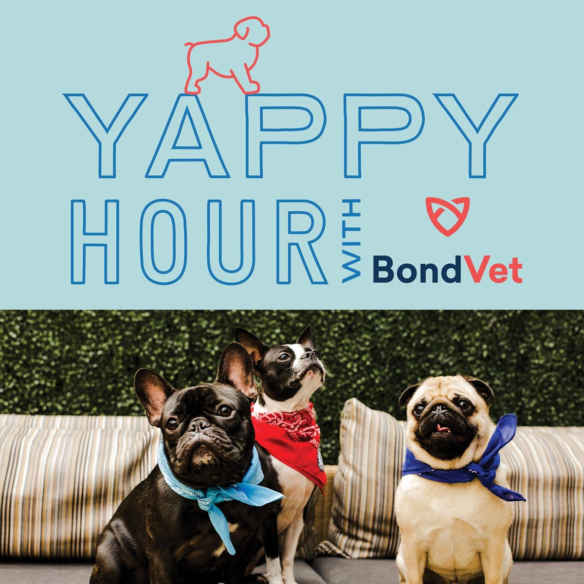 Yappy Hour at The Wilson