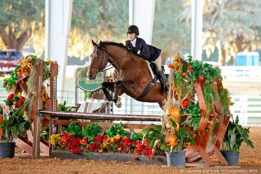 Hunt Country Horse Show