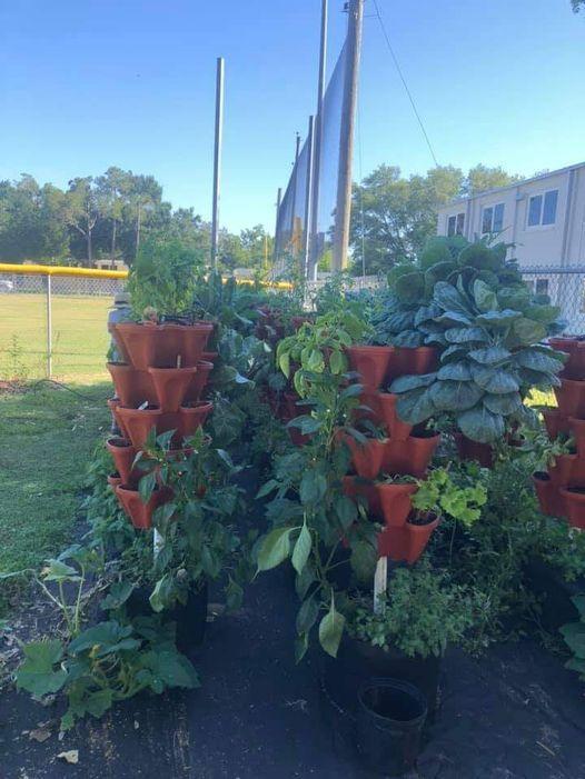 Community Garden Open House Tours